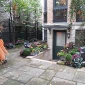 Back Yard Fall Design