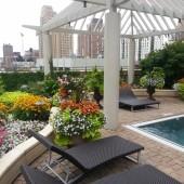 Bernardin Pool Side Oasis