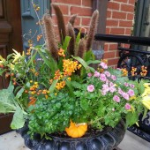 Fall Urn in Lincoln Park